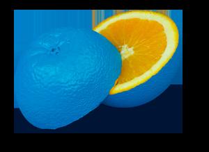 orangelos